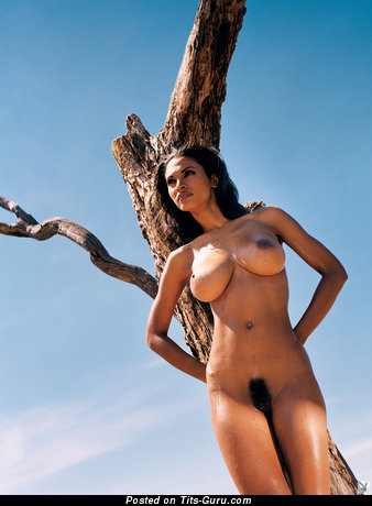 Karin Taylor - Charming Jamaican Playboy Brunette Babe with Charming Nude Natural Normal Tots (Hd Xxx Foto)