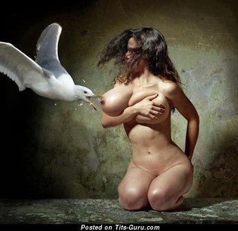 Image. Nude brunette with huge natural boobies photo