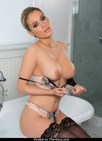 Splendid Topless Blonde with Splendid Bare Tight Hooters in Stockings, Panties & Lingerie is Undressing (Hd Porn Image)