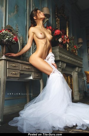 Graceful Glamour Unclothed Brunette (Hd Sexual Image)