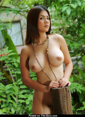 Natt Chanapa - Grand Unclothed Thai Brunette Babe (18+ Image)