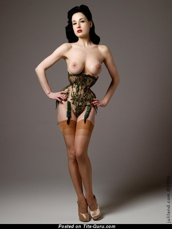 Dita Von Teese - Graceful American Chick with Graceful Nude Normal Titties (18+ Photo)