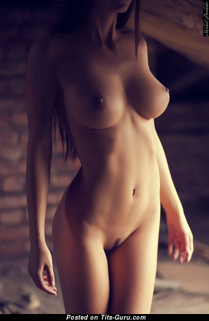 Image. Sexy nude brunette with big natural boobies image