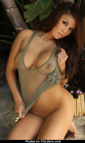 Alluring Vixens - Graceful Brunette Babe with Graceful Naked D Size Tittys & Large Nipples in Lingerie (Hd Porn Foto)
