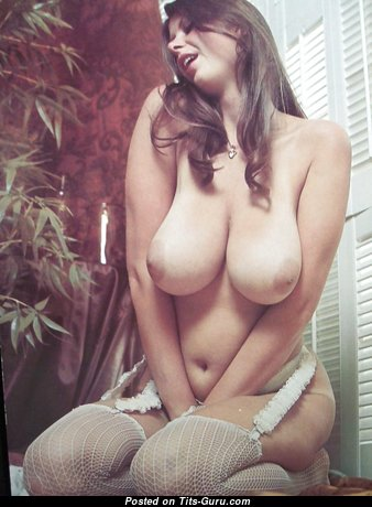 Alluring Babe with Alluring Bald Natural Substantial Tots & Red Nipples in Stockings (Hd Sexual Picture)