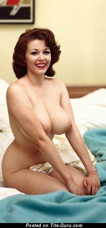 Elaine Reynolds - Nice American Playboy Brunette with Nice Defenseless Real Full Chest (Vintage 4k Porn Photoshoot)