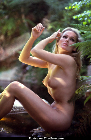 Ursula Andress: nude wonderful woman with medium natural breast picture