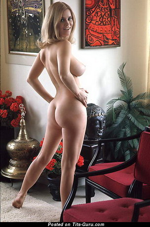 Barbara Hillary - Gorgeous American Playboy Doll with Gorgeous Bald Real D Size Tits (Vintage 18+ Image)