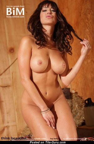 Image. Naked beautiful girl with big natural boobs image