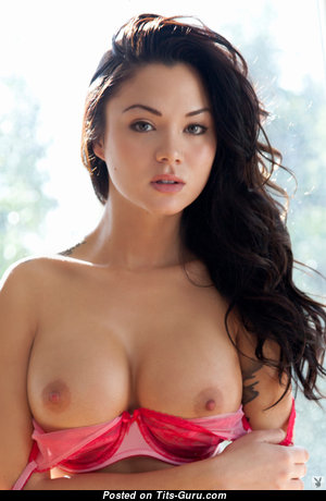 Handsome Naked Playboy Brunette (Hd Sexual Picture)