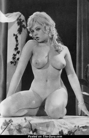 Charming Unclothed Blonde (Vintage Xxx Picture)
