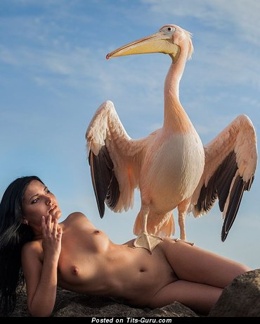 Sweet Chick with Sweet Nude Real Med Busts (Xxx Pix)