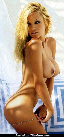 Изображение. Pamela Anderson - изображение шикарной раздетой девушки