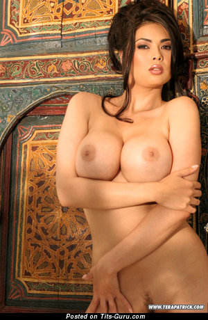 Image. Tera Patrick - naked brunette with huge tits photo