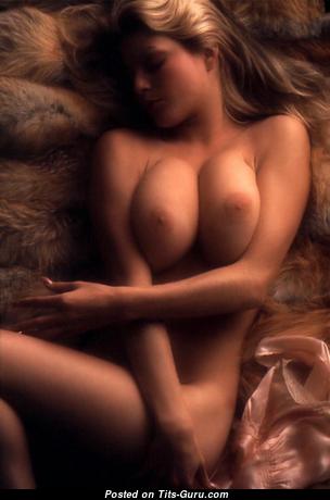 Daina House: блондинка Playboy (США) с красивыми обнажёнными натуральными сиськами (hd ххх фото)