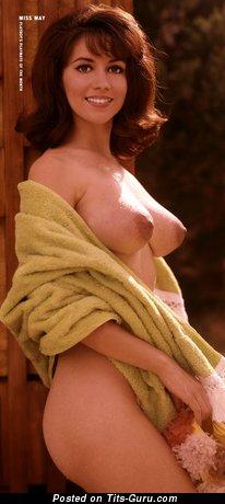 Hedy Scott - Pleasing Playboy Brunette Babe with Pleasing Defenseless Natural C Size Boobie (Vintage Hd 18+ Wallpaper)