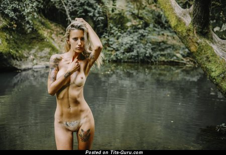 Image. Allison Duboi Liselotte (Liselotte anita Baratta) - naked blonde with small fake tittys and tattoo photo