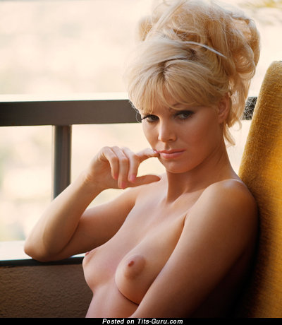 Susan Denberg - nude blonde with small natural tittes and big nipples image