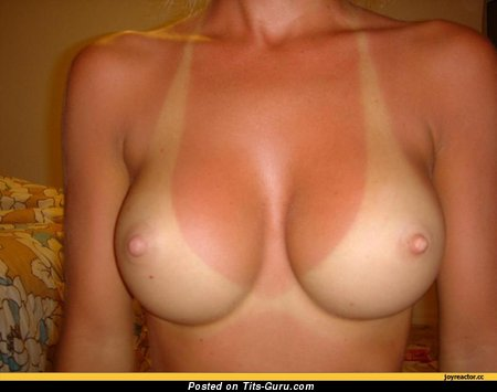Cute Miss with Cute Bare Firm Knockers (Xxx Pix)