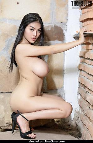 Feii Orapun - Elegant Naked Asian Doll (Hd 18+ Photoshoot)