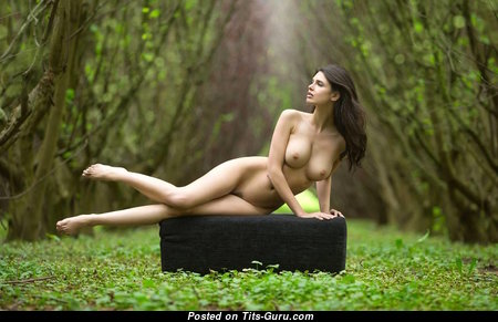 Splendid Glamour Undressed Brunette with Pointy Nipples (Hd Sexual Image)