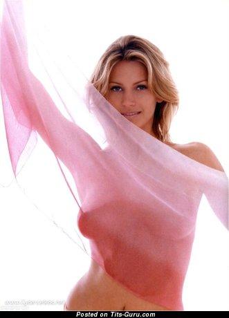 Natasha Henstridge - Beautiful Canadian Blonde Actress with Beautiful Naked Natural Medium Balloons (Hd Xxx Image)