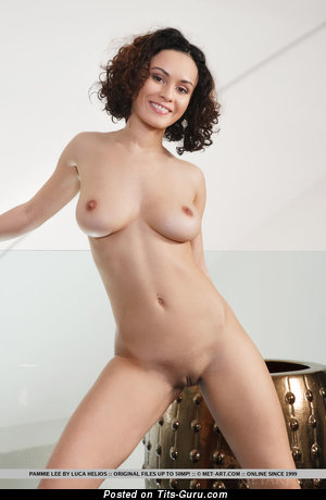 Image. Pammie Lee - nude brunette with medium natural breast picture