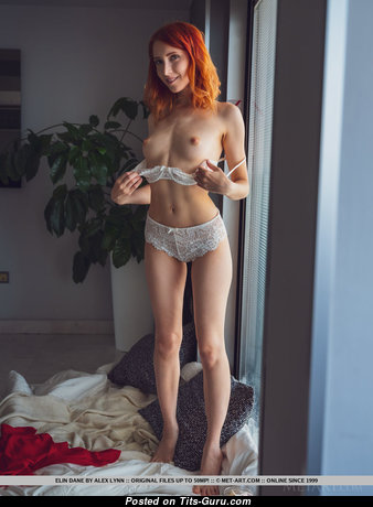 Elin Flame - Hot Topless Red Hair Actress, Babe & Pornstar with Hot Bare Microscopic Jugs & Inverted Nipples in Panties & Lingerie is Undressing (Porn Pic)