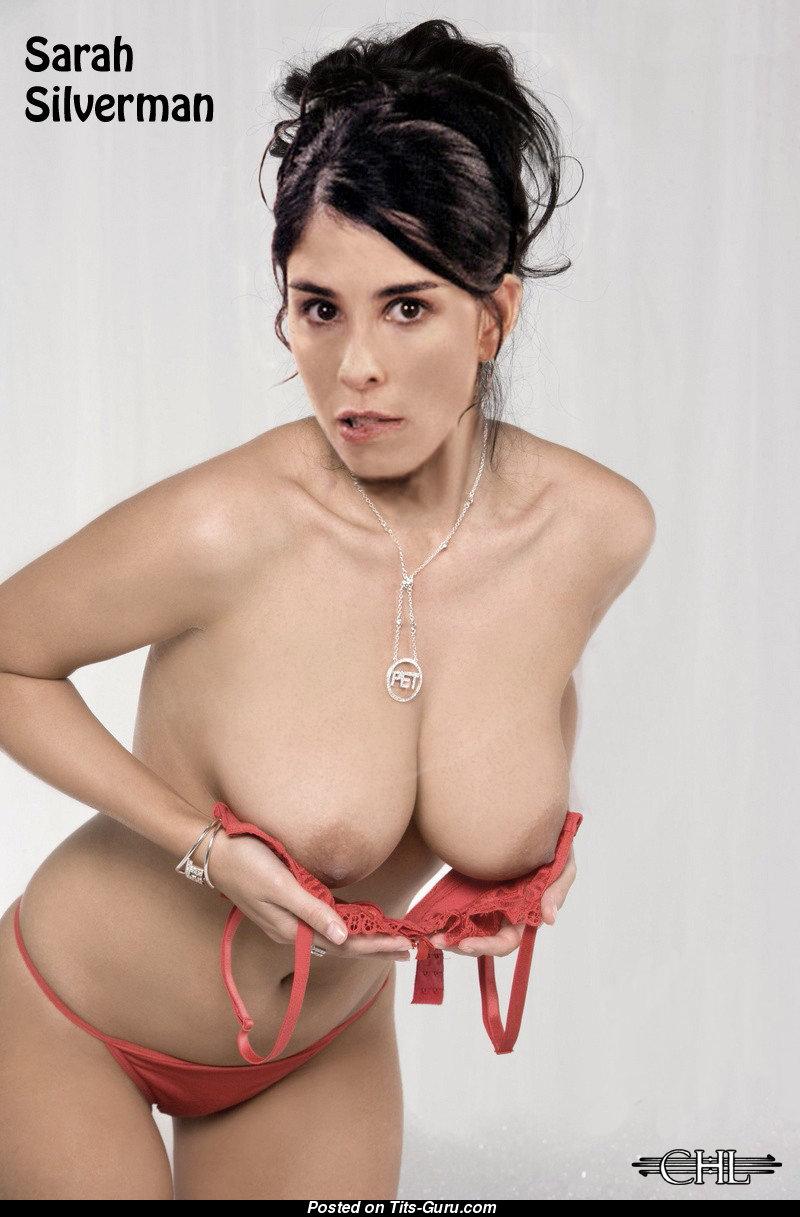 Sarah silverman naked big tits fake photos 190