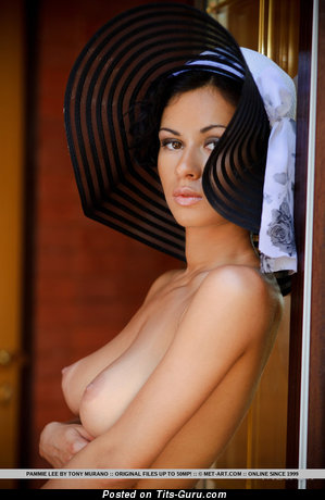 Pammie Lee - Graceful Russian Moll with Graceful Naked Natural Mid Size Busts & Erect Nipples (Sexual Picture)