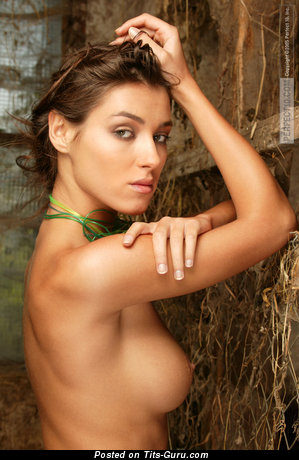 Image. Teresa Diaze - sexy nude wonderful female with medium boob photo