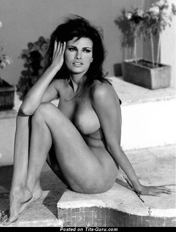 Image. Raquel Welch - sexy topless brunette with medium natural tittes vintage