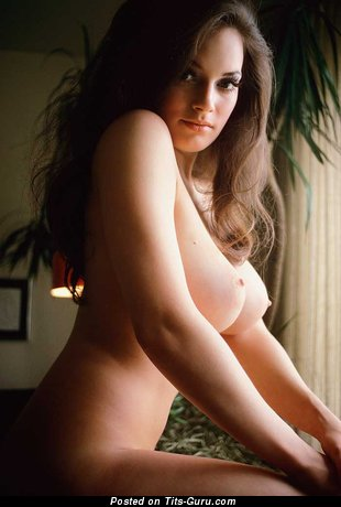 Splendid Topless Playboy Brunette Babe with Splendid Bare Natural Medium Boob (Vintage Sex Picture)