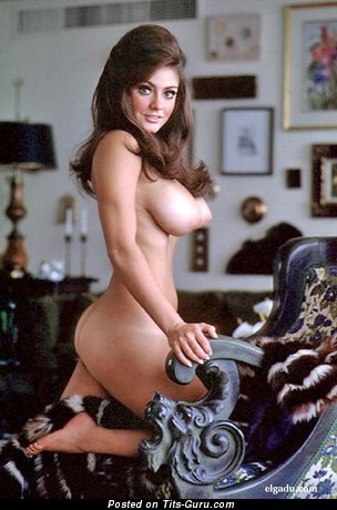 Cynthia Myers - Splendid American Playboy Brunette Babe with Splendid Bald Real Substantial Titties (Vintage 18+ Picture)