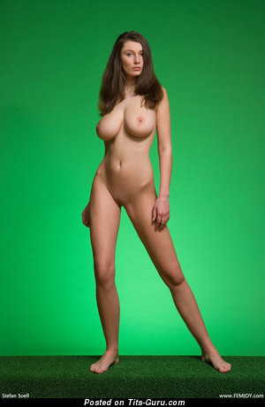 Image. Ashley Spring - sexy topless brunette with medium natural tots image
