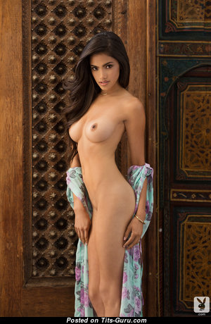 Fine Babe with Fine Nude Natural Minuscule Tittys (Hd Porn Image)