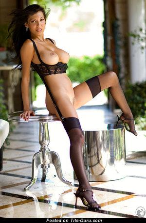 Jenny Milstead - Elegant American Playboy Brunette Babe with Elegant Bald Normal Titties in Lingerie, Stockings & High Heels (18+ Image)
