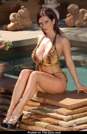 Image. Denise Milani - awesome lady with fake boobies pic