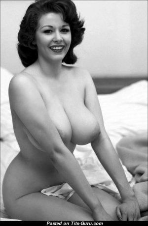Elaine Reynolds - Sweet American Playboy Brunette with Sweet Defenseless Natural Big Hooters (Vintage Hd Porn Wallpaper)