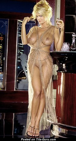 Brooke Richards - Dazzling American Playboy Blonde Babe with Dazzling Bald Fake Boobys (Hd Sex Photo)