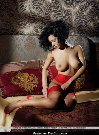 Image. Pammie Lee - nude hot lady image