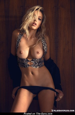 Image. Sexy topless blonde with medium boob image