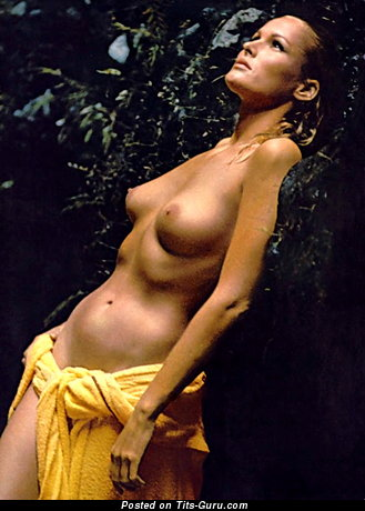 Image. Ursula Andress - awesome female with medium natural breast image