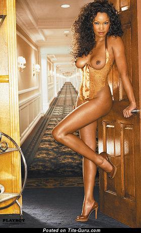Garcelle Beauvais - Fine Haitian, American Brunette Actress with Fine Nude Natural Boob (Sex Wallpaper)