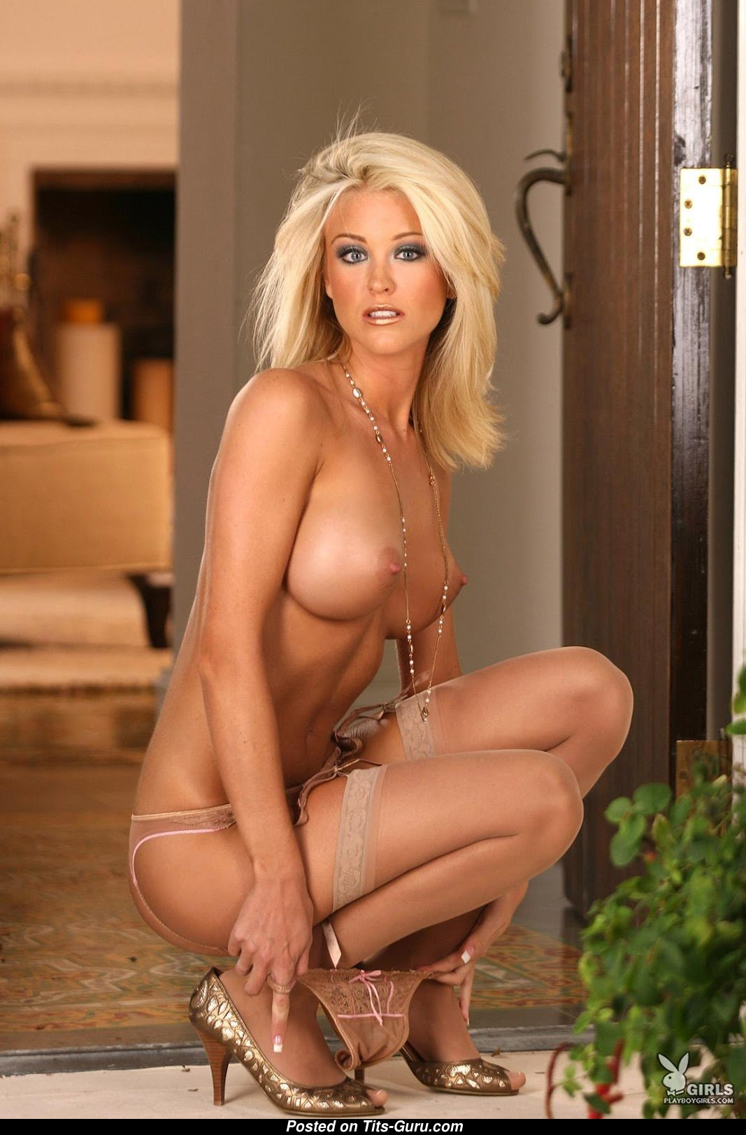 Ashley Lowe - Playboy Blonde With Bald C Size Breasts In -7442