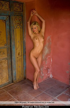 Image. Nude awesome girl with small natural tittes pic