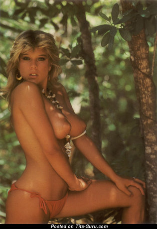 Samantha Fox: nude blonde with medium natural tittys pic