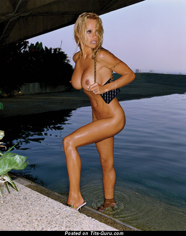 Image. Pamela Anderson - sexy naked amazing woman with fake boobies image