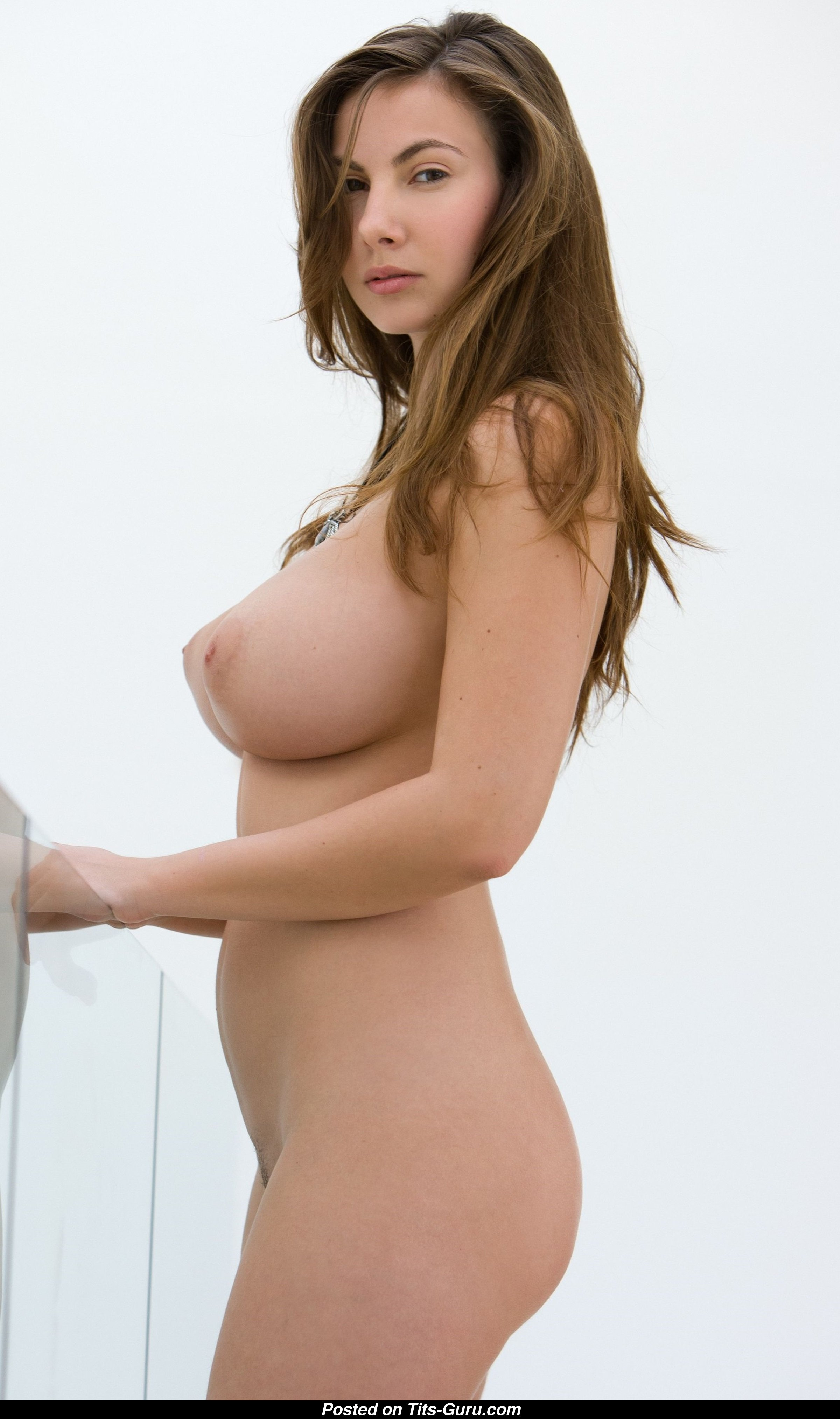 Connie Carter - Pornstar  Babe With Open Natural H Size Knockers  Piercing Xxx Photoshoot 13 -8541