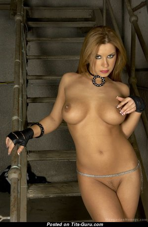 Dorothy Black - Charming Hungarian Red Hair Pornstar with Charming Open Round Fake Boobs & Enormous Nipples (Hd Xxx Picture)